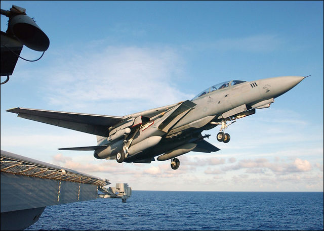 F 14 (戦闘機)の画像 p1_11