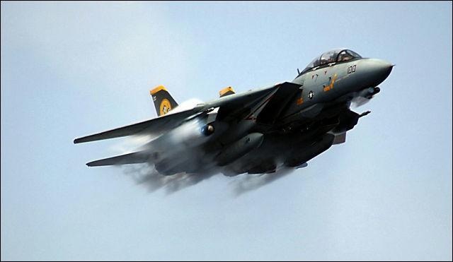F 14 (戦闘機)の画像 p1_10