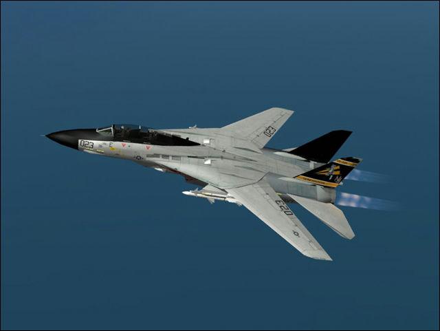 F 14 (戦闘機)の画像 p1_19