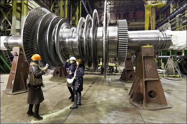 http://dnaimg.com/2011/05/15/a-big-plant-for-big-details/a-big-plant-for-big-details_021.jpg