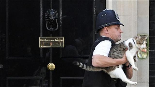 イギリス首相官邸ネズミ捕獲長・...