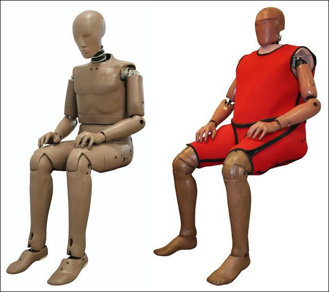 肥満人口の増加で「交通事故テスト用ダミー人形」も太めになりつつある